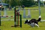 PJFC_FunDay2010_212