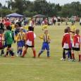Under 9 | Under 10 | Under11 | Under 12 | Under 13|Under 14 Under 12 Girls Team Photos   Penkridge Junior 2010 Summer Cup Under 9 Boys Quarter...